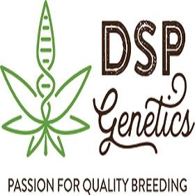 DSP Genetics