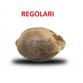 Semi Regolari