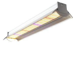 led-grow-light-280_watt_.jpg