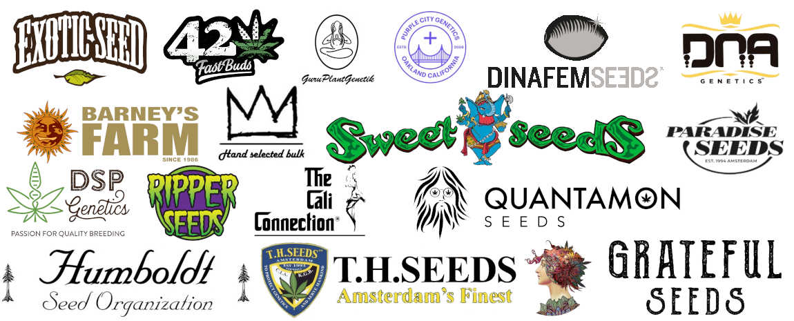 Banche Semi Cannabis